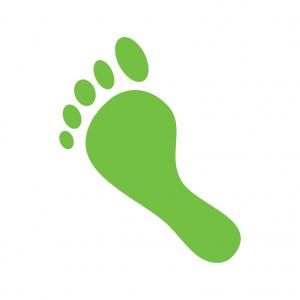 icon environmental impact
