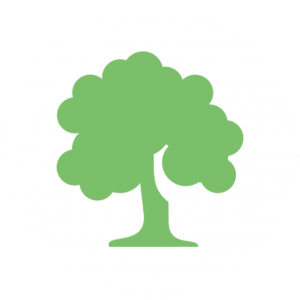 icon forests